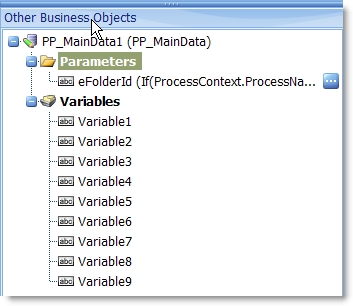 process data Business Object parameter